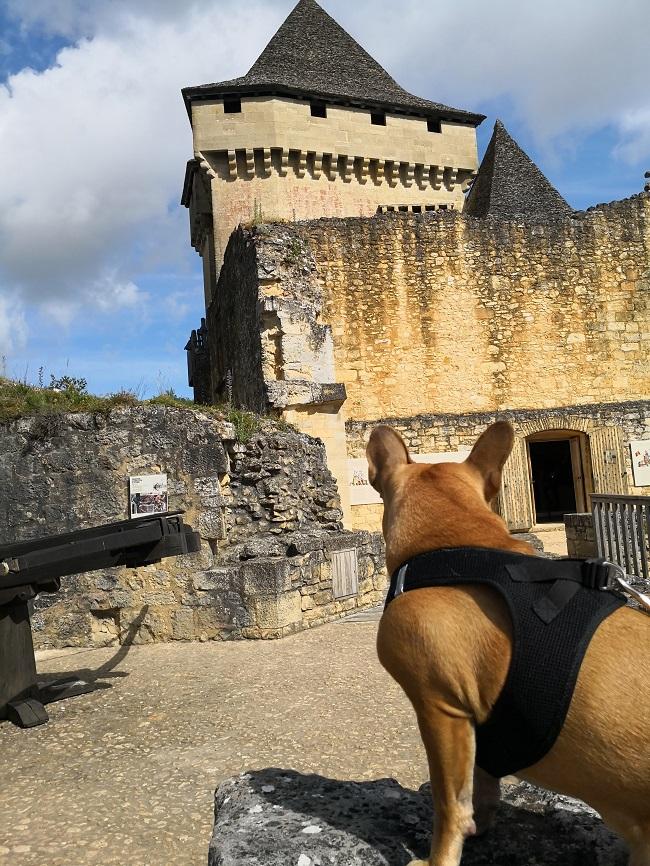les plus beaux châteaux à visiter avec votre chien