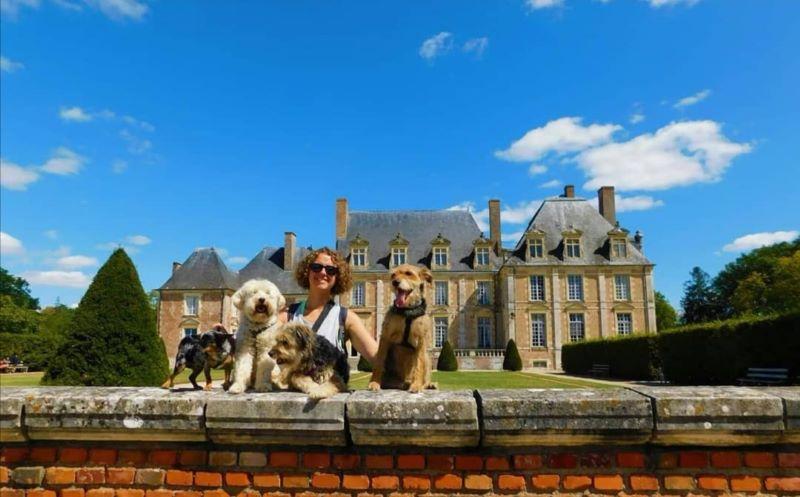 visite château de la ferté saint aubin avec chien