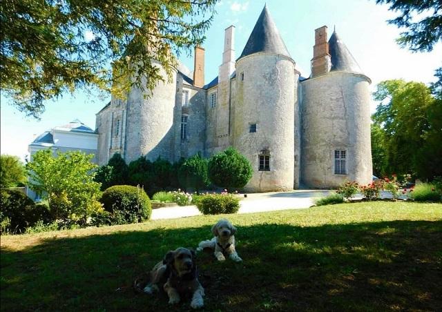 château de meung sur loire avec chien