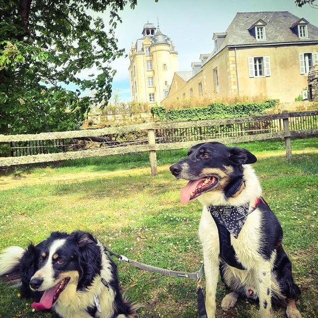 château de keravéon avec chien