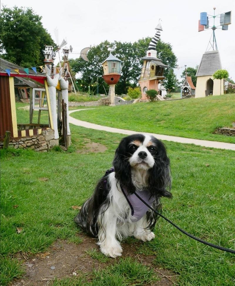 musée du poète ferrailleur chien accepté