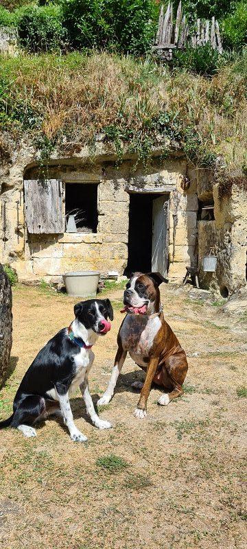 visite village troglodytique avec chien
