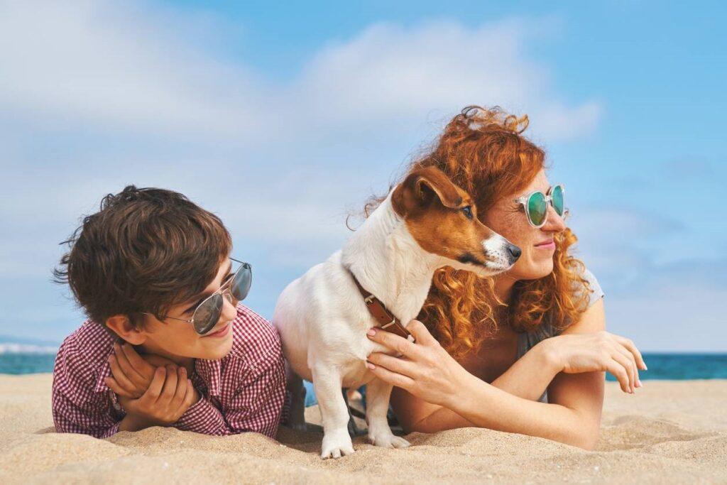 activités à faire avec son chien